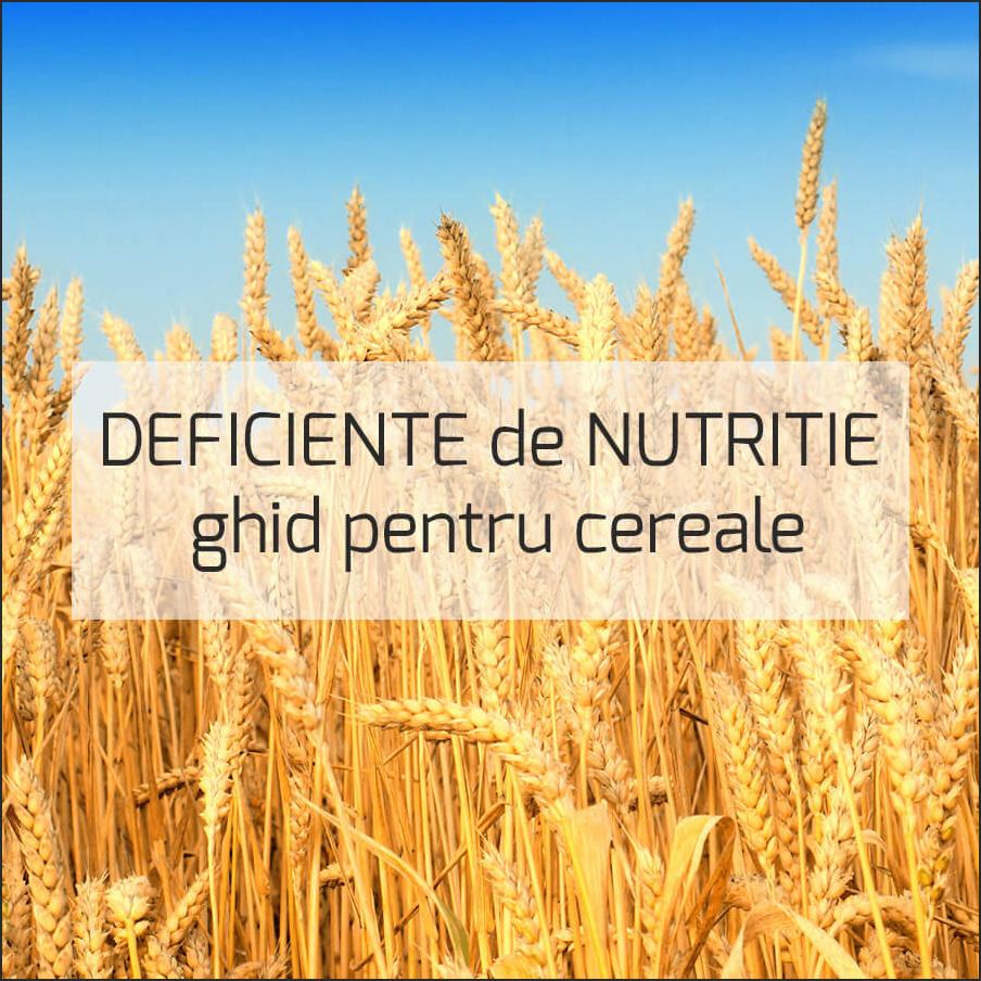 Deficiente-de-nutritie-2