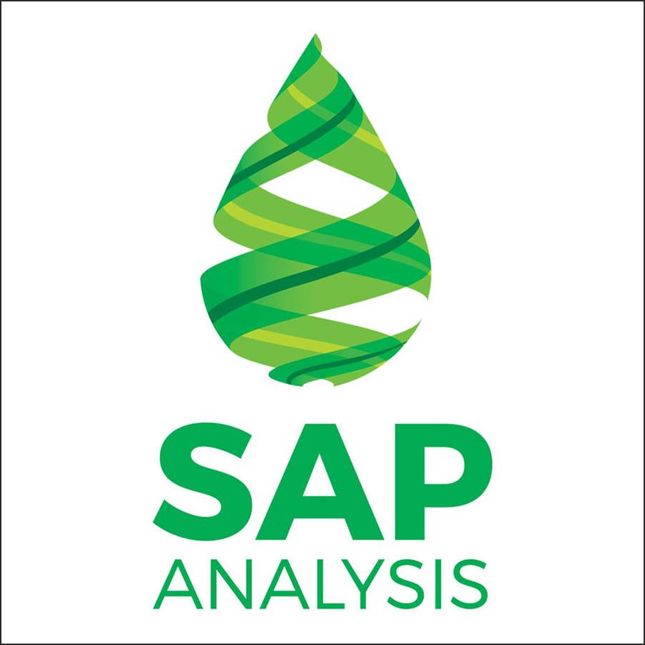 SAP-Analysis-2